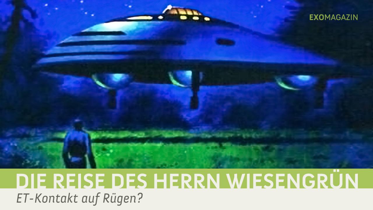 Die Reise des Herrn Wiesengrün