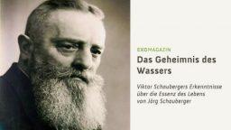 Das Geheimnis von Viktor Schauberger
