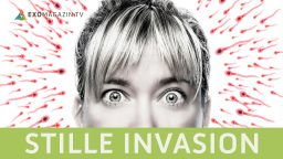 Stille Invasion