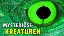 Mysteriöse Kreaturen - Spannende Fälle der Kryptozoologie