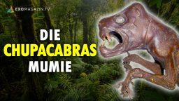 Die Chupacabras-Mumie