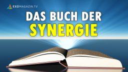 Das Buch der Synergie