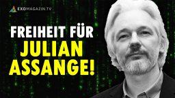Freiheit für Wikileaks-Gründer Julian Assange - Robert Fleischer trifft Mathias Bröckers