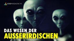 Das Wesen der Außerirdischen