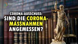 Sind die Corona-Massnahmen angemessen - Viviane Fischer Corona Ausschuss